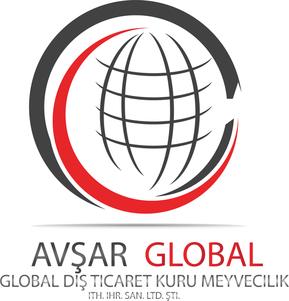 rsz_4rsz_avsar-global-logo-ohne-stern-wh-1969×2048